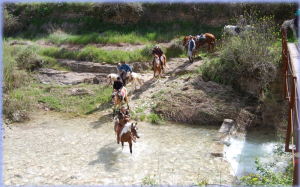 excursiones a cavallo sierra guara
