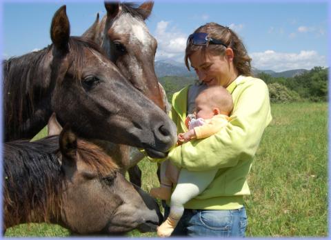 montar a caballo en el somontano